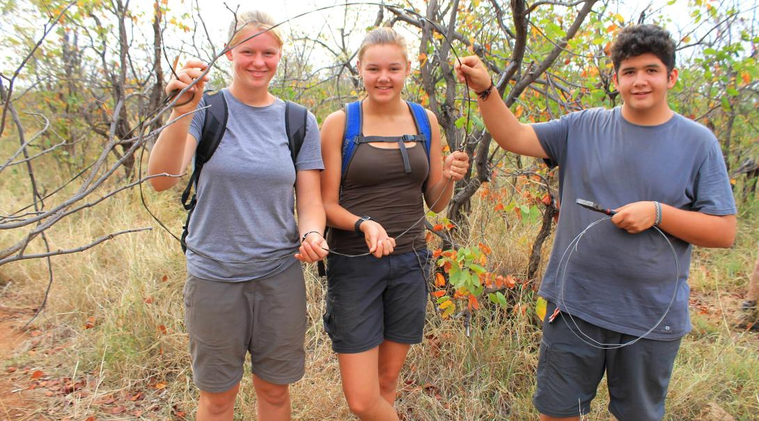Teenage volunteers removing snares to protect wildlife in Botswana.